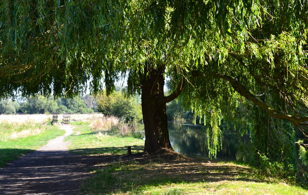 Riverside property Cambridge