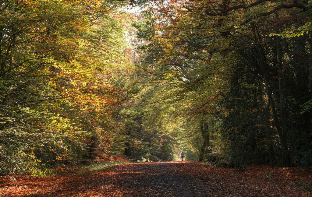 Epping Essex